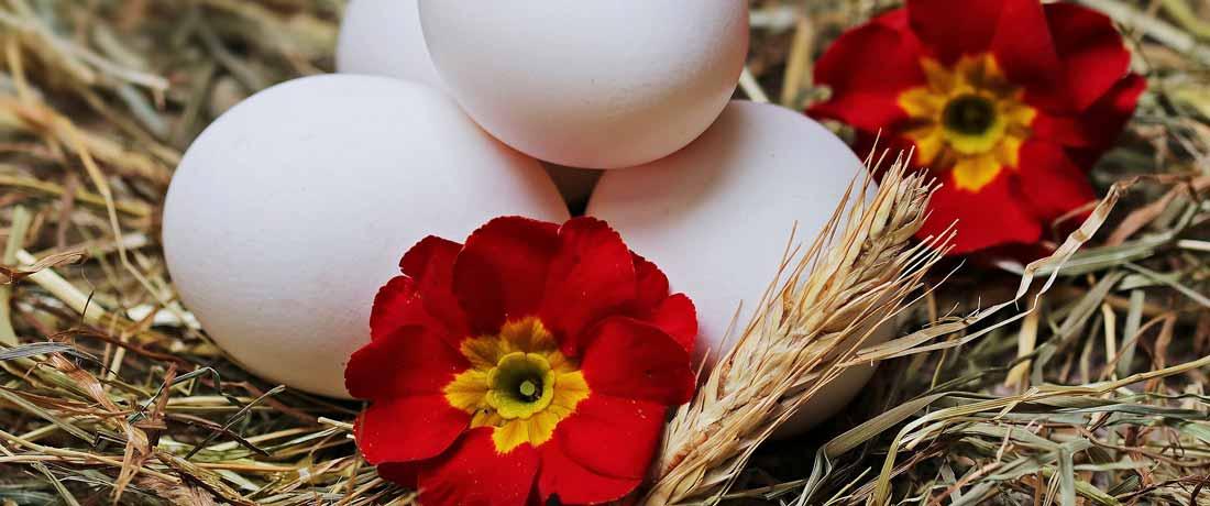 Co se peče na Velikonoce?